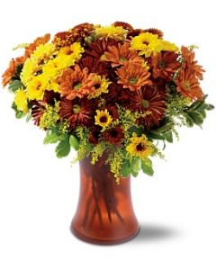 Country Chrysanthemums